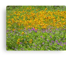 Wild and Bright! Canvas Print