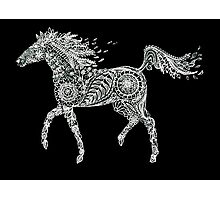 Doodle horse Photographic Print