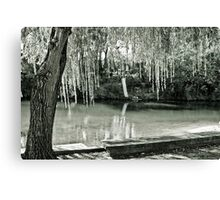 Water, Light, Willow Canvas Print