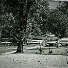 Centenary Park, Bright by Jane Keats