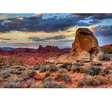 White Domes Canyon - Valley of Fire Photographic Print