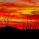 Jupiter Sunset by InvictusPhotog