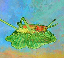 Grasshopper by evisionarts
