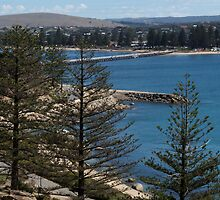 Victor Harbour from Granite Island by David Hunt