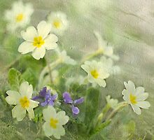 Spring Greens by Patsy Smiles