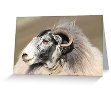 the goat Greeting Card