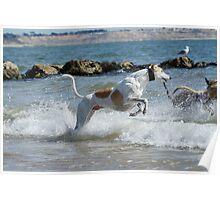 Wave Jumper Poster