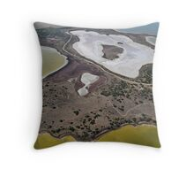 Colours of The Coorong Throw Pillow