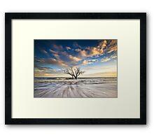 Charleston SC Botany Bay Edisto Island - Alone Framed Print