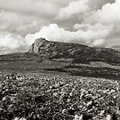 Unseen Rock - Haytor from the West by CameraMoose