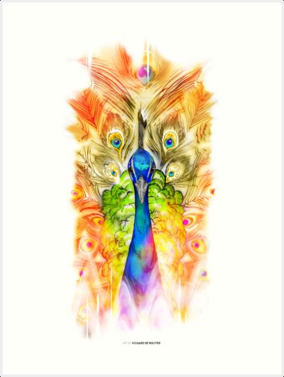 Peacock by Richard de Ruijter