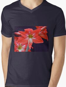 Red Amaryllis Flower Mens V-Neck T-Shirt