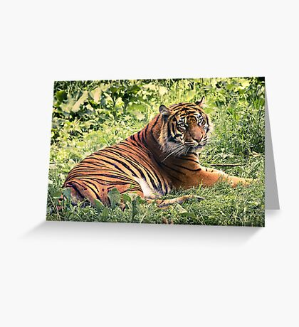 They're Grrreat! Greeting Card