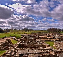 Vindolanda - Roman Fort by Chris Vincent