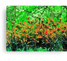nature-spring Canvas Print