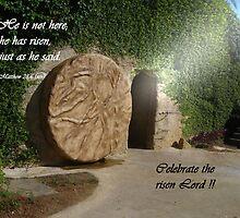 Celebrate the risen Lord! by Deborah McLain