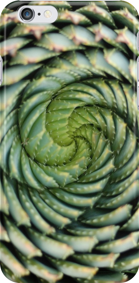 spiral aloe - lesotho's endangered species by mellychan