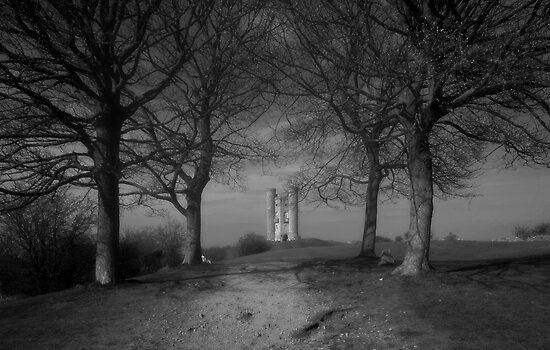 Trees at Broadway tower by nick board