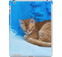 Cute cat sleeping. iPad Case/Skin