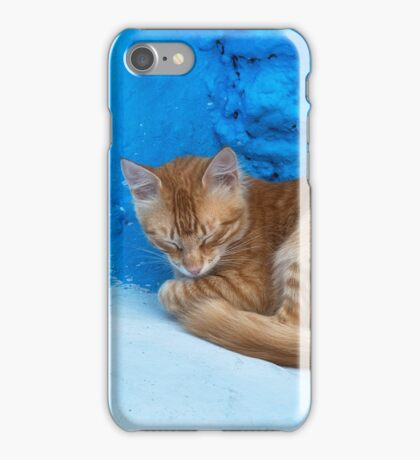 Cute cat sleeping. iPhone Case/Skin