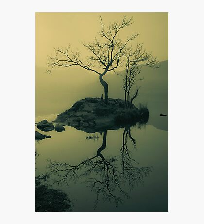 Morning Moods Photographic Print