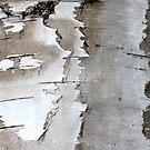 shy wooden ghost by yvesrossetti