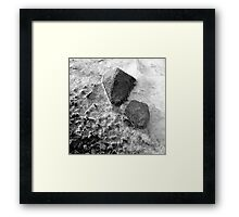 Nature 12 Framed Print
