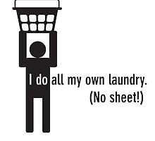I do all my own laundry. (No sheet!) by gstrehlow2011