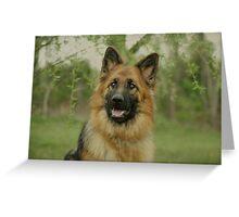 Queena - German Shepherd Greeting Card