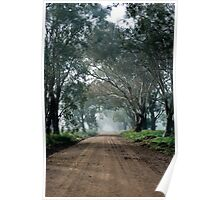 Country Lane Poster