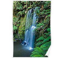 Beauchamp Falls, Ottway National Park , Victoria, Australia Poster