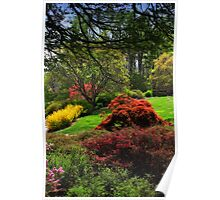 Biltmore Gardens - Valley Shot Poster