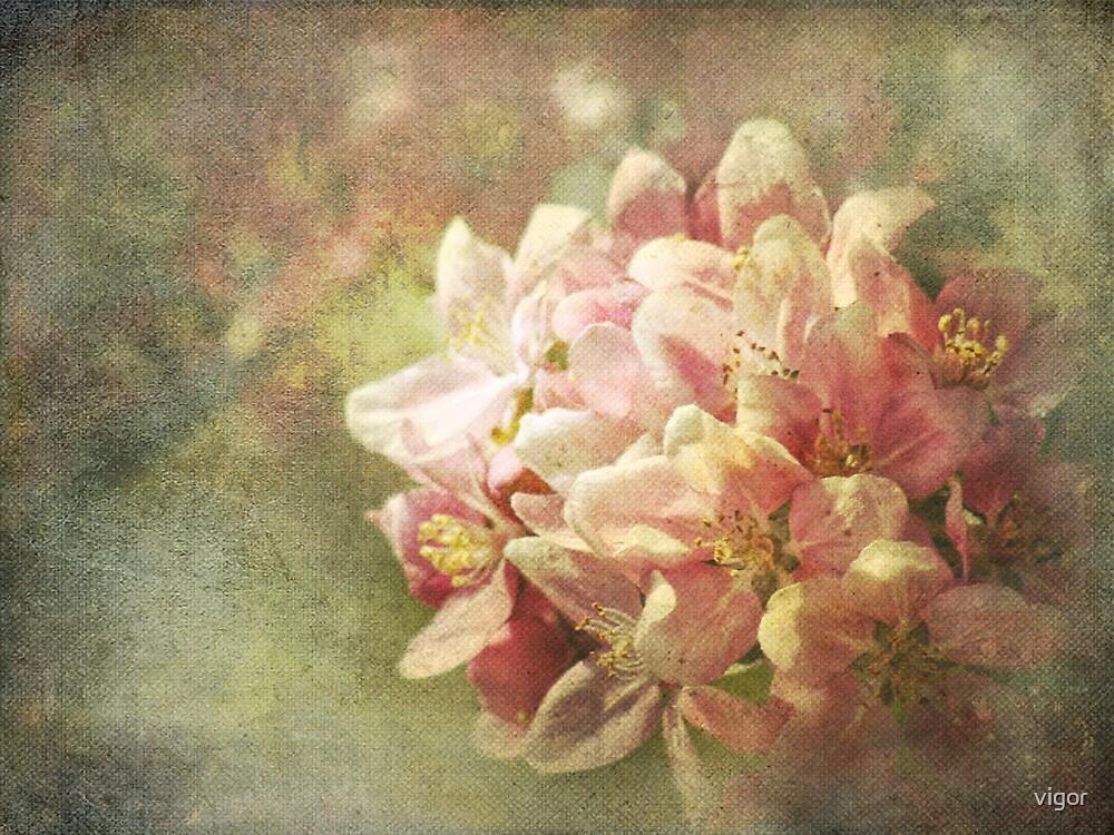Full Bloom by vigor