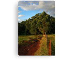 Nicholas Paddocks HDR Canvas Print