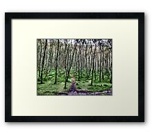 Winter Soldiers Framed Print
