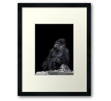 Master Of His Domain Framed Print