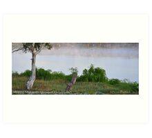 Sunrise on the River Murray @ Mannum, S.A. Art Print