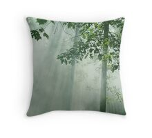 Enchanted Spring Morning Throw Pillow