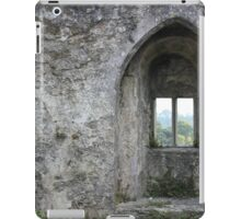 Wistful Window iPad Case/Skin