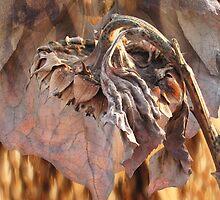 Winter Sunflower Medallion by Rod J Wood