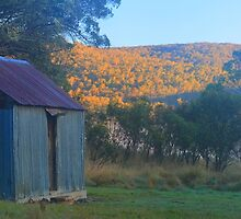 Pedens Hut On the Murrumbigee by Donovan wilson