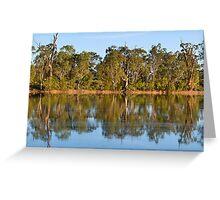 Murray River Scene, Mildura , Australia Greeting Card