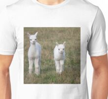 New Born Alpacas Unisex T-Shirt