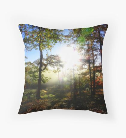 Looking Into A Warm Autumn Sunrise Throw Pillow