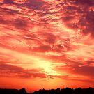 Fiery Sunrise by Graham Taylor