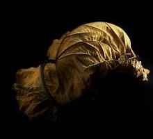 Golden by Barbara Morrison