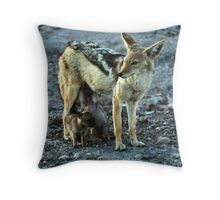 Black-backed Jackal Family Throw Pillow