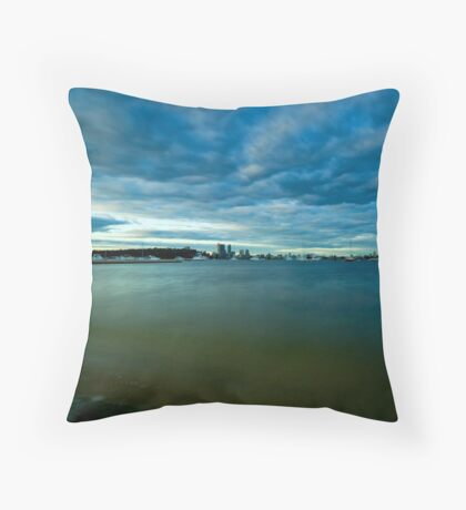 """By The Swan"""" Throw Pillow"""