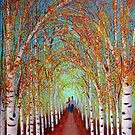 Autumn Birch trees by maggie326
