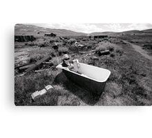 Bathing At Bodie Canvas Print